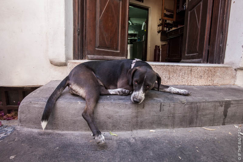 IfTheBagFits-Santorini-0362