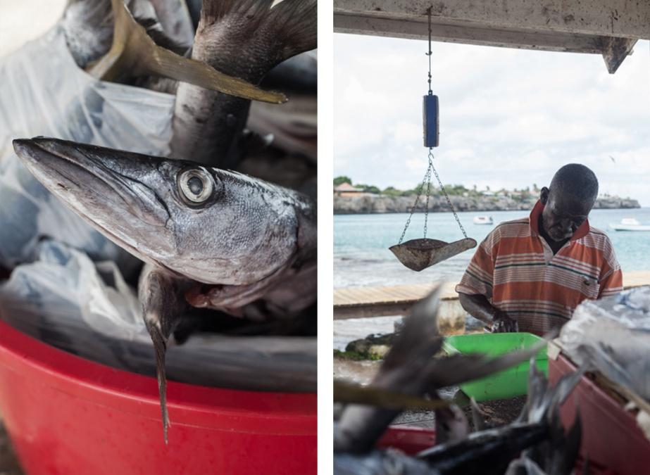 ITBF-FishermansBay-03