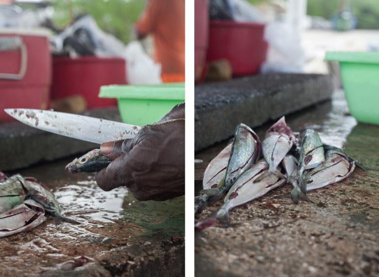 ITBF-FishermansBay-04